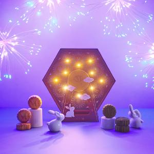 Introducing Celebration of Lights Mooncake Gift Set